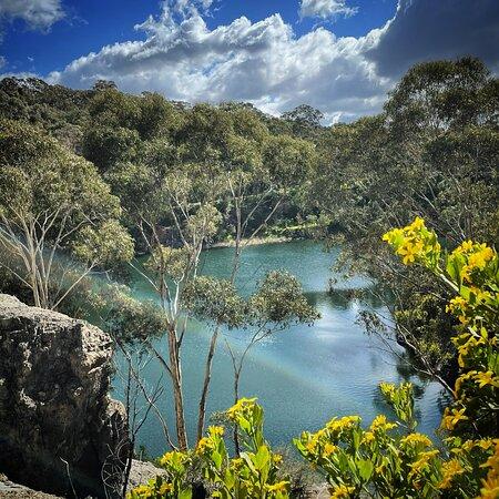 Spring at plenty gorge park. Yellowgum rec area loop walk around blue lake