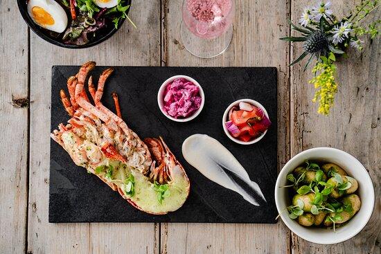 Newport bay lobster