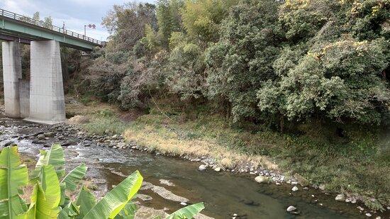 展望所正面の川岸には多くの横穴があります