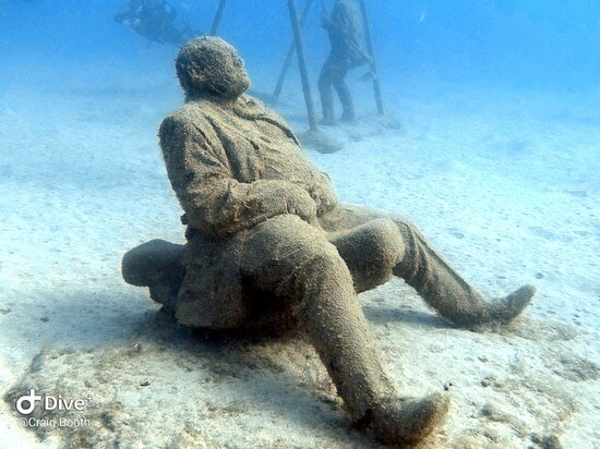 Excellent dive guide and school