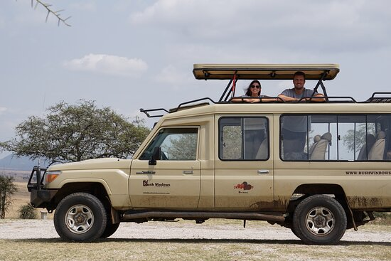 Serengeti National Park, Tanzanya: we provide the best for honey mooners  and you can do it with us from budget , mid-range to Luxury Accommodatin  we go beyond your expectation for Tanania safaris