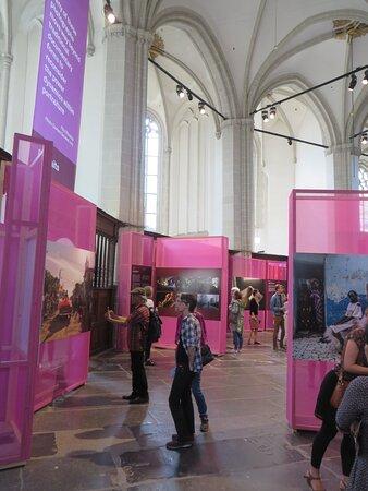 I amsterdam Card - City Pass for Amsterdam: Ingresso compreso per tante belle attrazioni