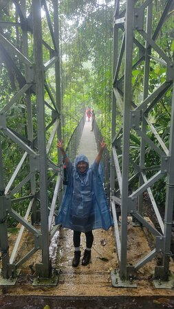 Arenal Volcano Rainforest Walk and Hot Springs: Scary Bridge Cross