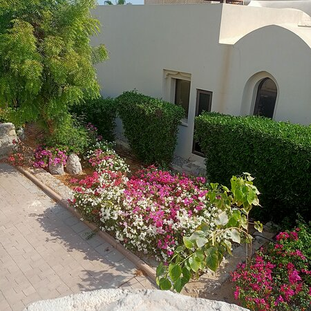 Emirate of Ras Al Khaimah, United Arab Emirates: Территория отеля Cove Rotana