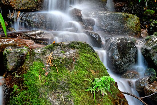 Tamara has many cascades that roll down the hill from all sides. A visit during monsoon is a must to enjoy them.