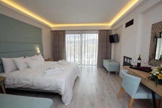 Δωμάτιο με πρόσβαση ΑΜΕΑ