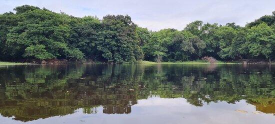 Hyderabad, India: Landscape gardens opposite arts college