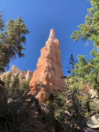 The ride down into Bryce Canyon was fantastic.