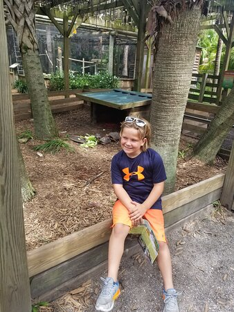 Private Airboat Tour with Alligator Encounter and Transport: 10-yr old with his favorite spot!