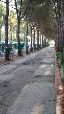 Vialetti con pavimentazione sconnessa