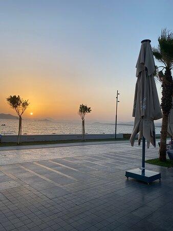 Sundia by Liberty exclusive Fethiye