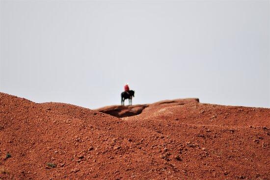 Monument Valley, UT: Souvenirs de mes Voyages -- USA - Arizona - Utah - Journée inoubliable sur les terres aux images mythiques des Western sans oublier l'essentiel la population Navajos - 21.09.19 - Cliquer sur la photo pour découvrir la prise de vue complète
