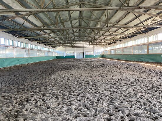 Herghelia Radauti / Radauti Horses Stud.