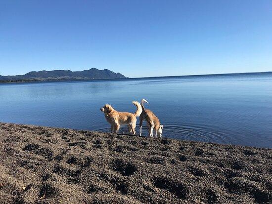 Ensenada, Chile: Lago Llanquihue