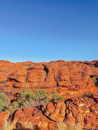 4-tägiger Campingausflug ab Ayers Rock einschließlich Uluru, Kata Tjuta und Kings Canyon: Kings Canyon