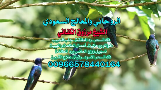 Kuwait: جَلْب آحبيب#مَرْزُوق الْكِنَانِيّ 00966578440164 ، جَلْب الْحَبِيب السَّعُودِيَّة ، جَلْب الْحَبِيب الكويت ، جَلْب الْحَبِيب الْأَمَارَات ، فَكّ السِّحْر ، رَدّ الْمُطْلَقَة ، خَوَاتِم رُوحَانِيَّةٌ ، سِحْرٌ عُلْوِيٌّ ، سِحْرٌ سُفْلِي ، شَيْخ رُوحَانِيٌّ فِي السَّعُودِيَّة , جَلْب الْحَبِيب لِلزَّوَاج , شَيْخ Saudi Arabia, شَيْخ رُوحَانِيٌّ السَّعُودِيَّة , أَفْضَل شَيْخ رُوحَانِيٌّ فِي السَّعُودِيَّة , شَيْخ رُوحَانِيٌّ سَعُودِي مُجَرَّب , أَفْضَل شَيْخ رُوحَانِيٌّ سَعُودِي , جَلْب الْحَبِيب ب