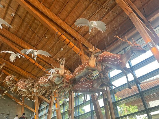Tainan City Zuojhen Fossil Park