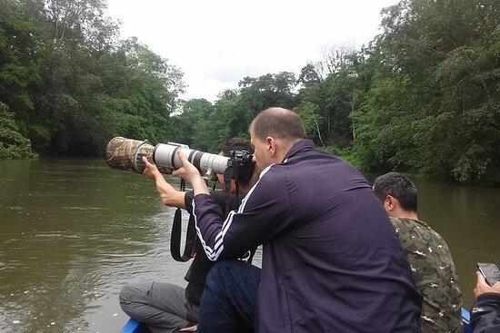 Pure Nature Aventura Birding and Herping Tour
