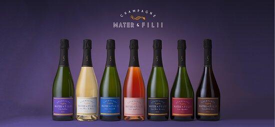Champagne Mater & Filii