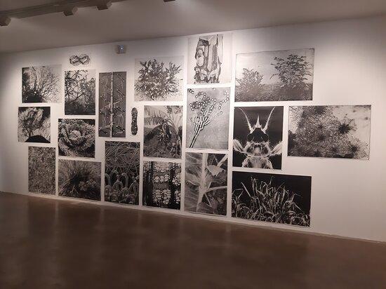 Centre D'art Maristany