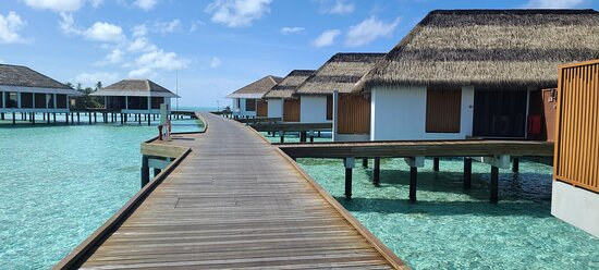 Exceptional experience and amazing honeymoon experience!!!