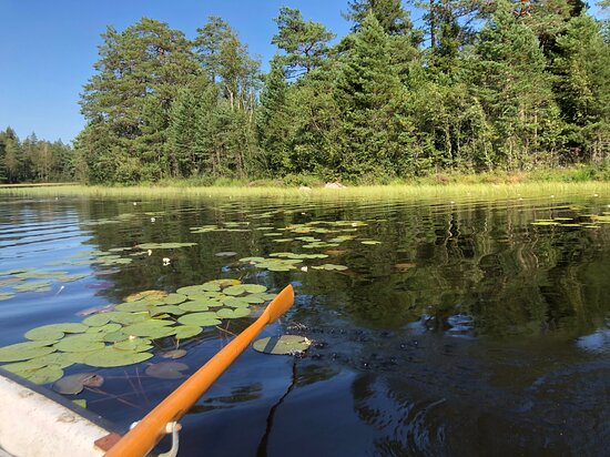 Stilla och tyst tur på sjön.