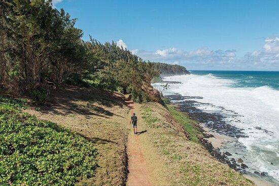 Découvrir le sud sauvage de l'île Maurice