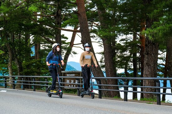 Bilde fra Akita