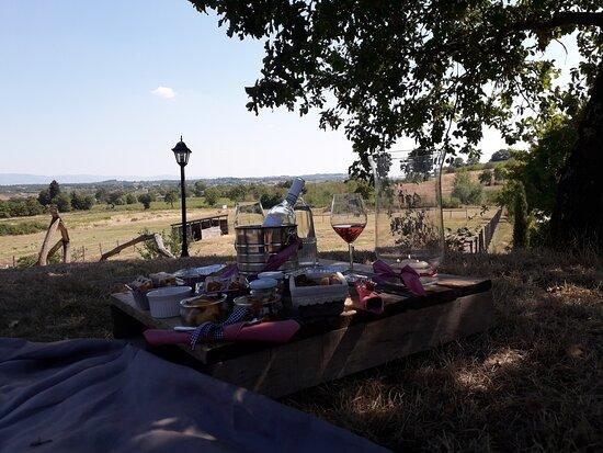 Farnetella, Italien: Sotto la quercia con il picnic