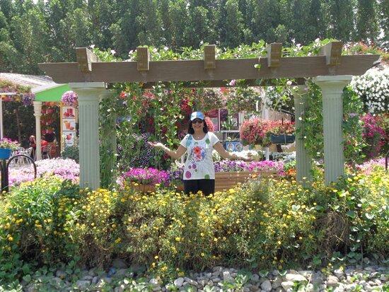 Emirados Árabes Unidos: Miracle garden!! Hermoso!🌻💐🌷🌿
