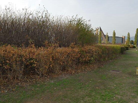 Parco di San Donato