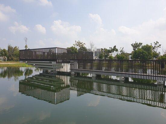 Taichung Central Park Matcha Lake