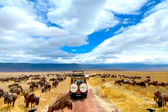 Staajabu Africa Travel Limited
