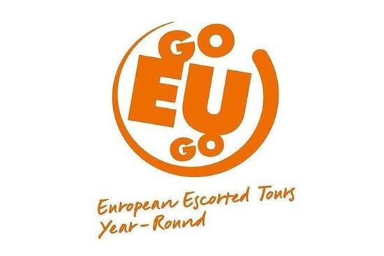 goEUgo International Limited