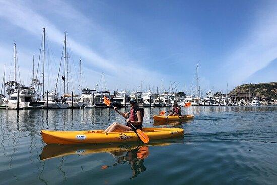 Dana Point Harbor Kayaking & Hiking Adventure