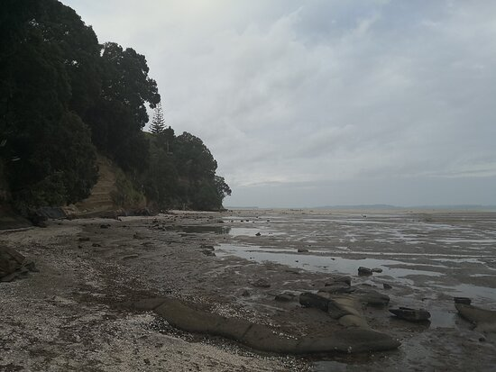 Cockle Bay Reserve