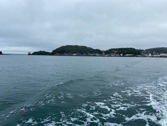 Oban Sea Tours