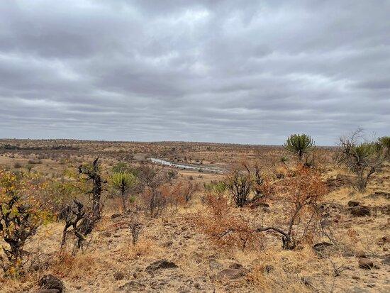 Mashatu Game Reserve صورة فوتوغرافية