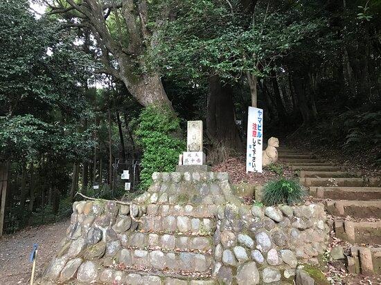 Iiyama Hakusan Forest Park