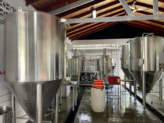 Whale Tail Brewery