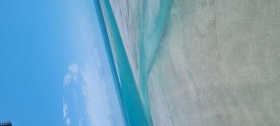 جزيرة بازاروتو صورة فوتوغرافية