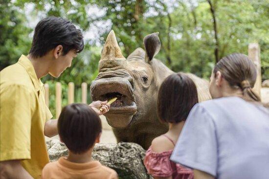 สวนสัตว์สิงคโปร์