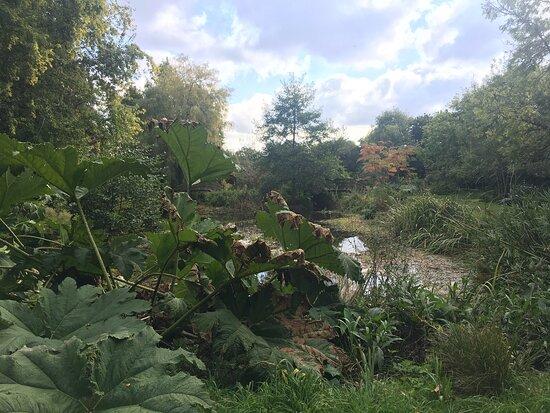 Jardin de Kervezennec
