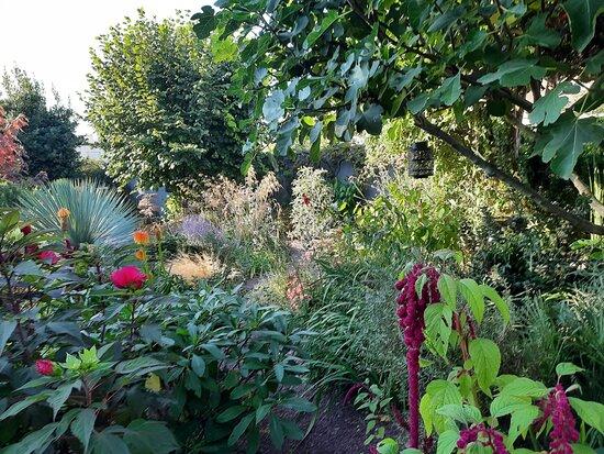 Le Jardin Secret De Pan