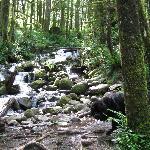 Small falls at Wallace falls