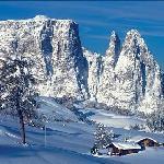 Alpe-di-Siusi-Seiseralm
