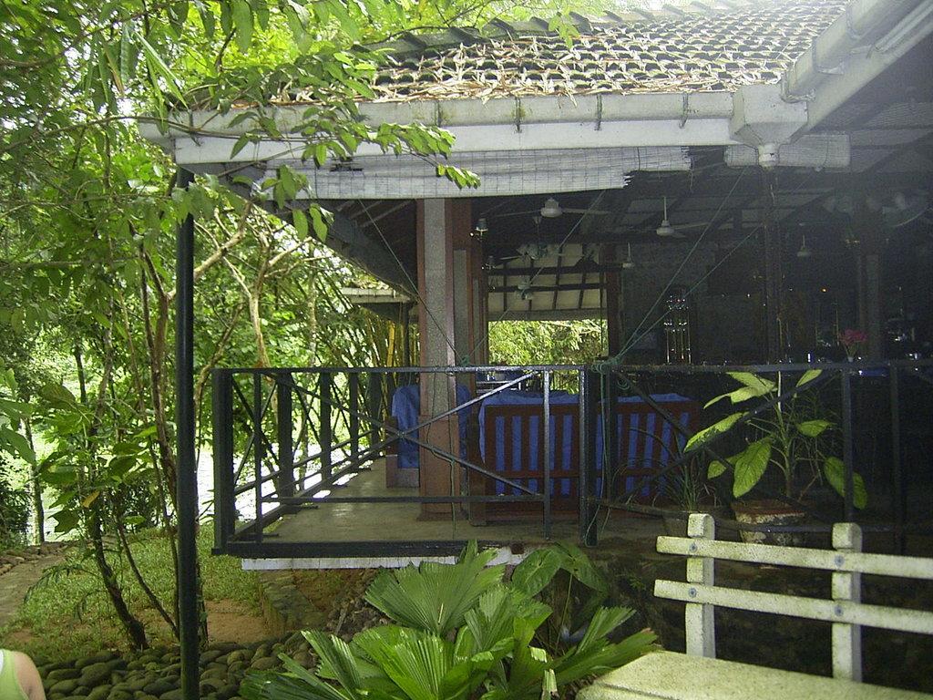 種植園酒店