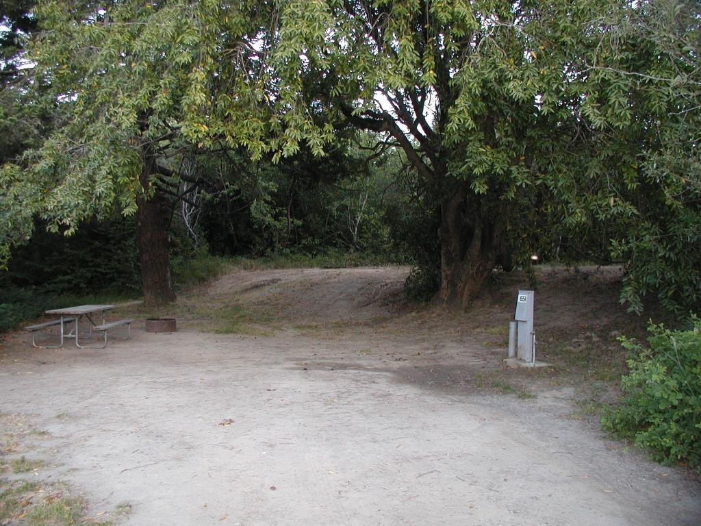 Casini Ranch Campground