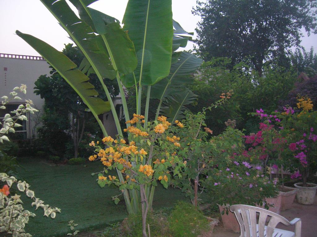 Shantigriha Bed and Breakfast
