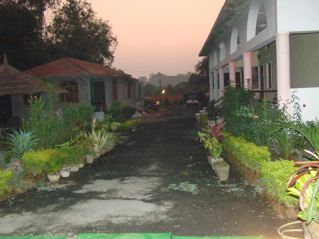 Tigers Haven Resort